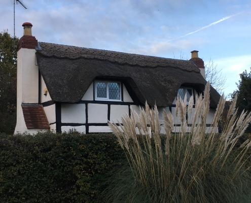 21 thatched house
