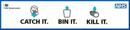 catch it bin it kill it